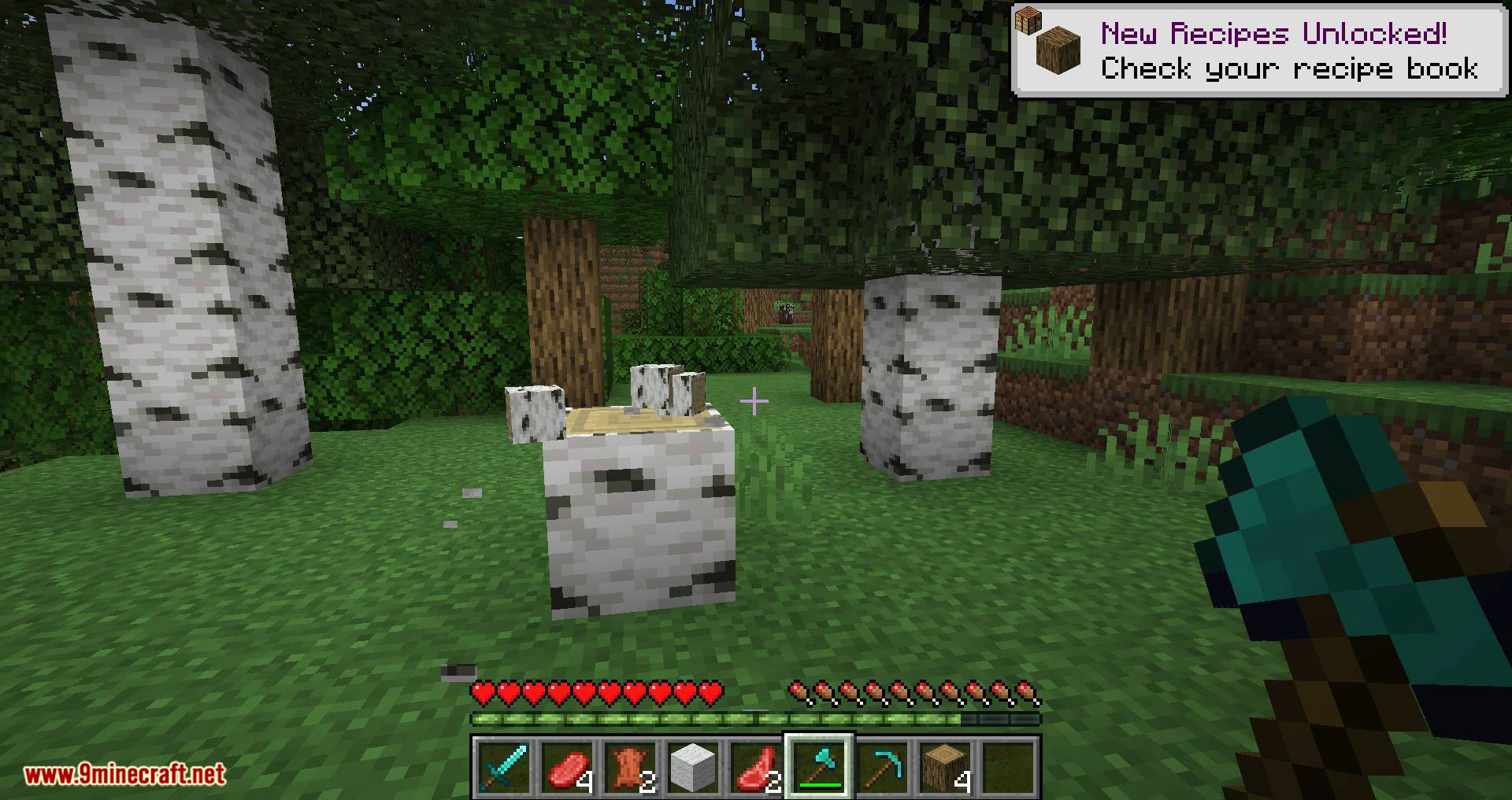 Better Dropped Items mod for minecraft 06