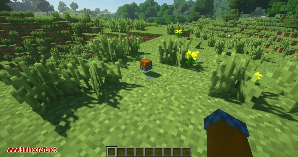 Just Player Head mod for minecraft 02