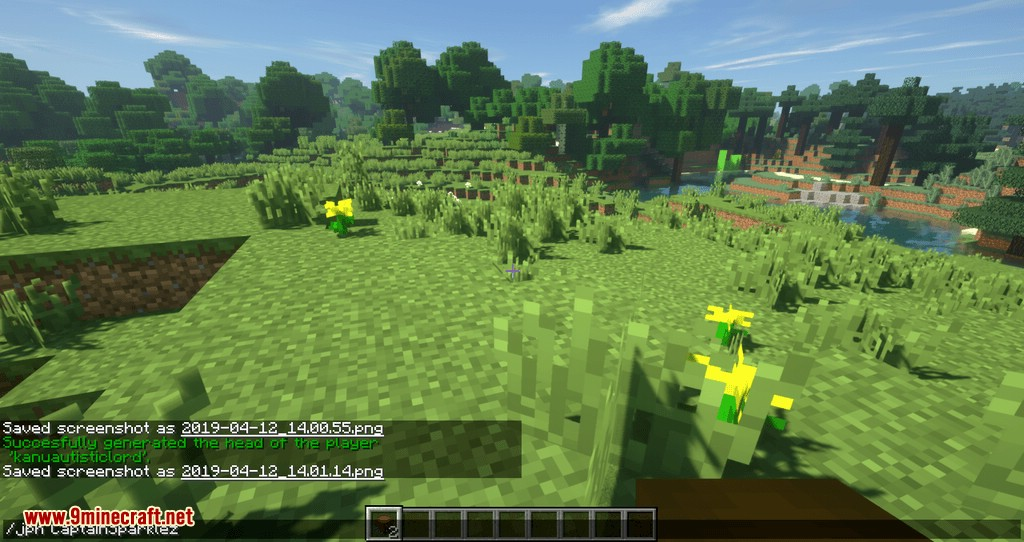 Just Player Head mod for minecraft 06