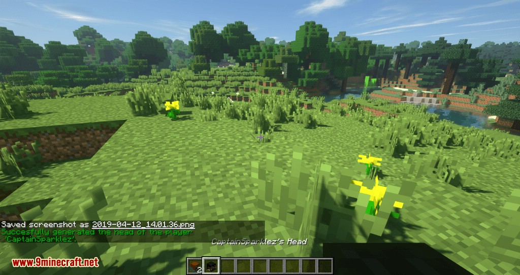 Just Player Head mod for minecraft 07