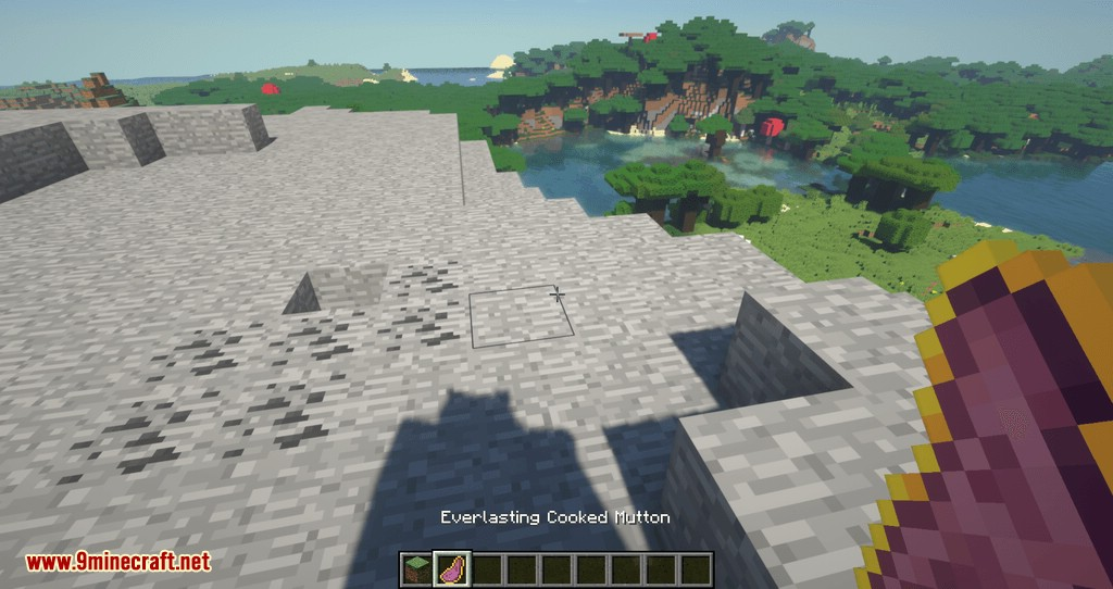 Artifacts mod for minecraft 08