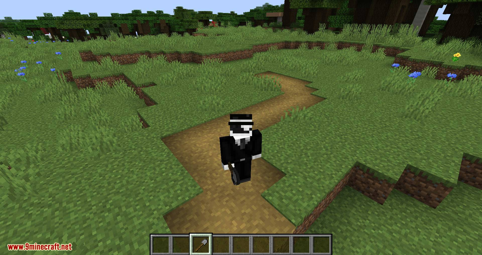 More Paths mod for minecraft 03