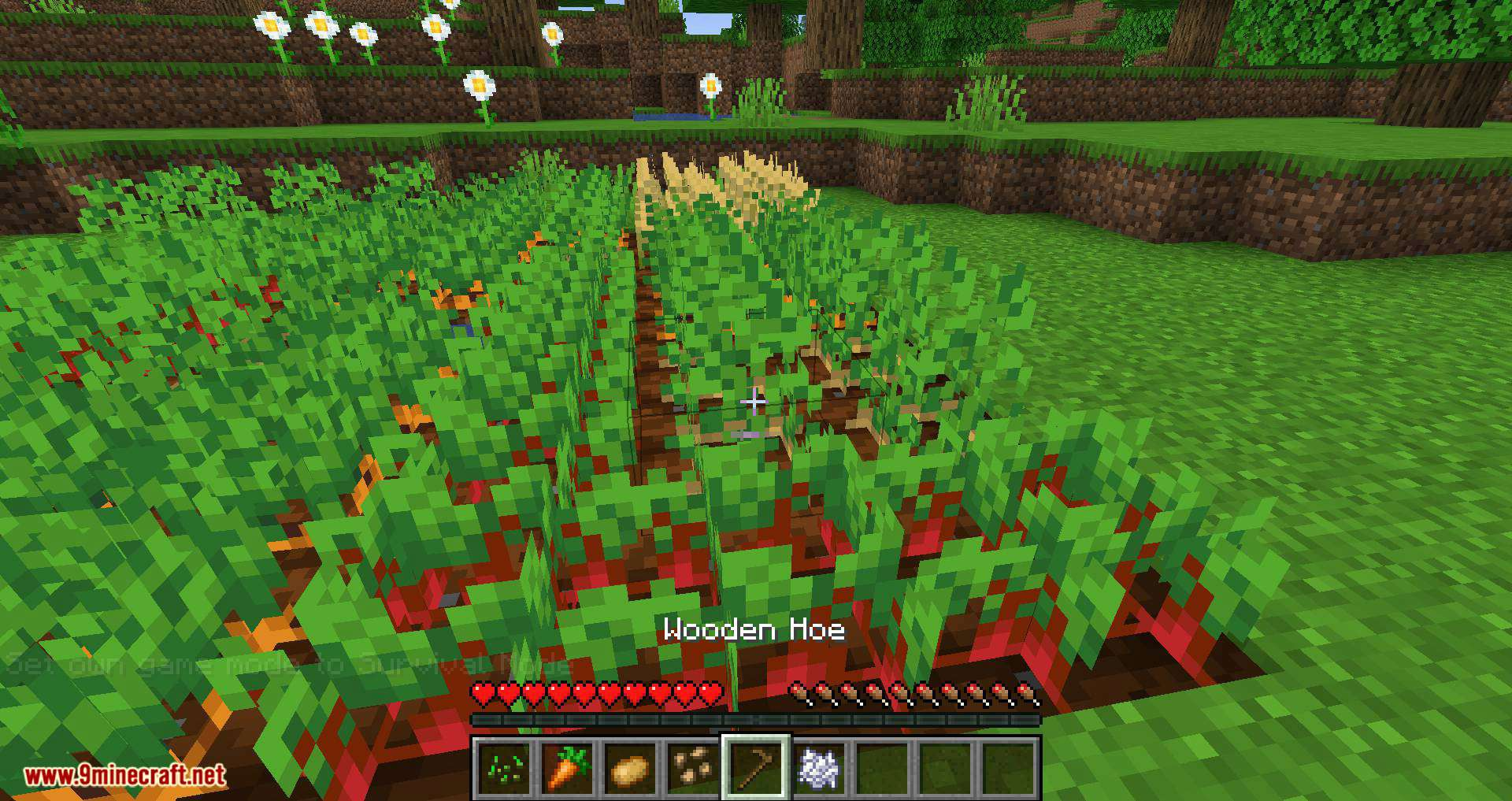Replanting Crops mod for minecraft 05