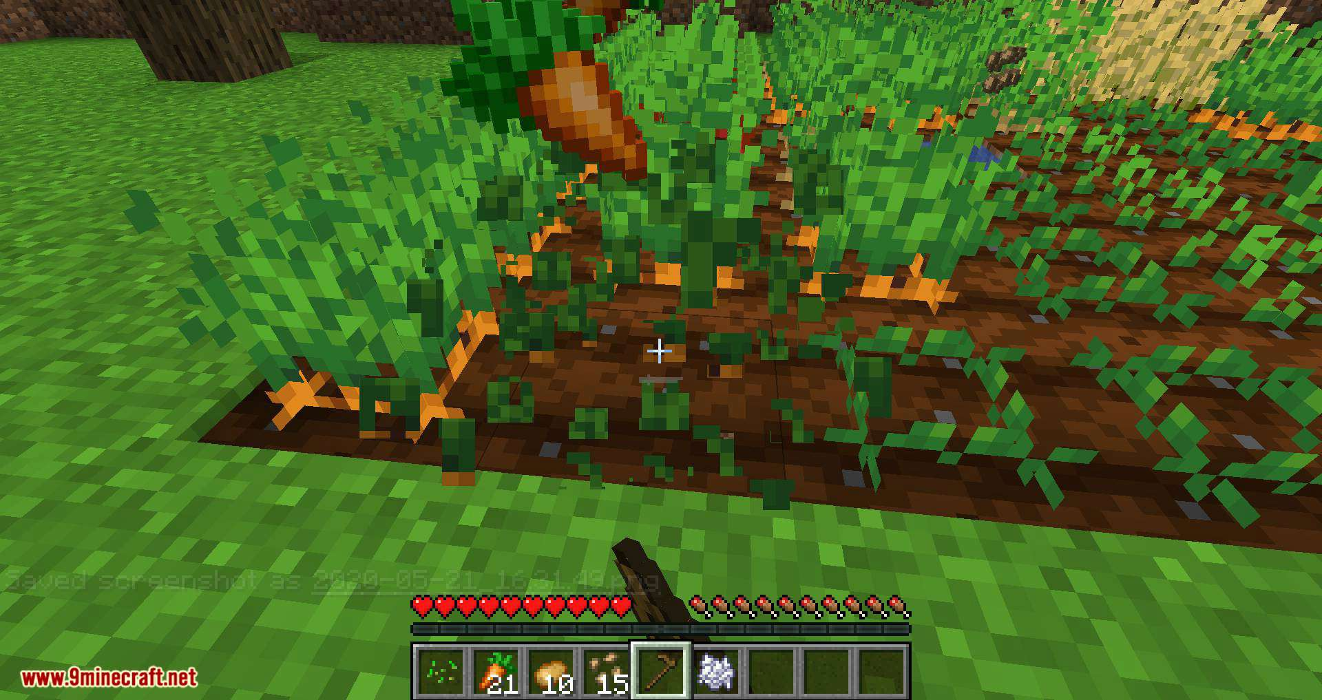 Replanting Crops mod for minecraft 10