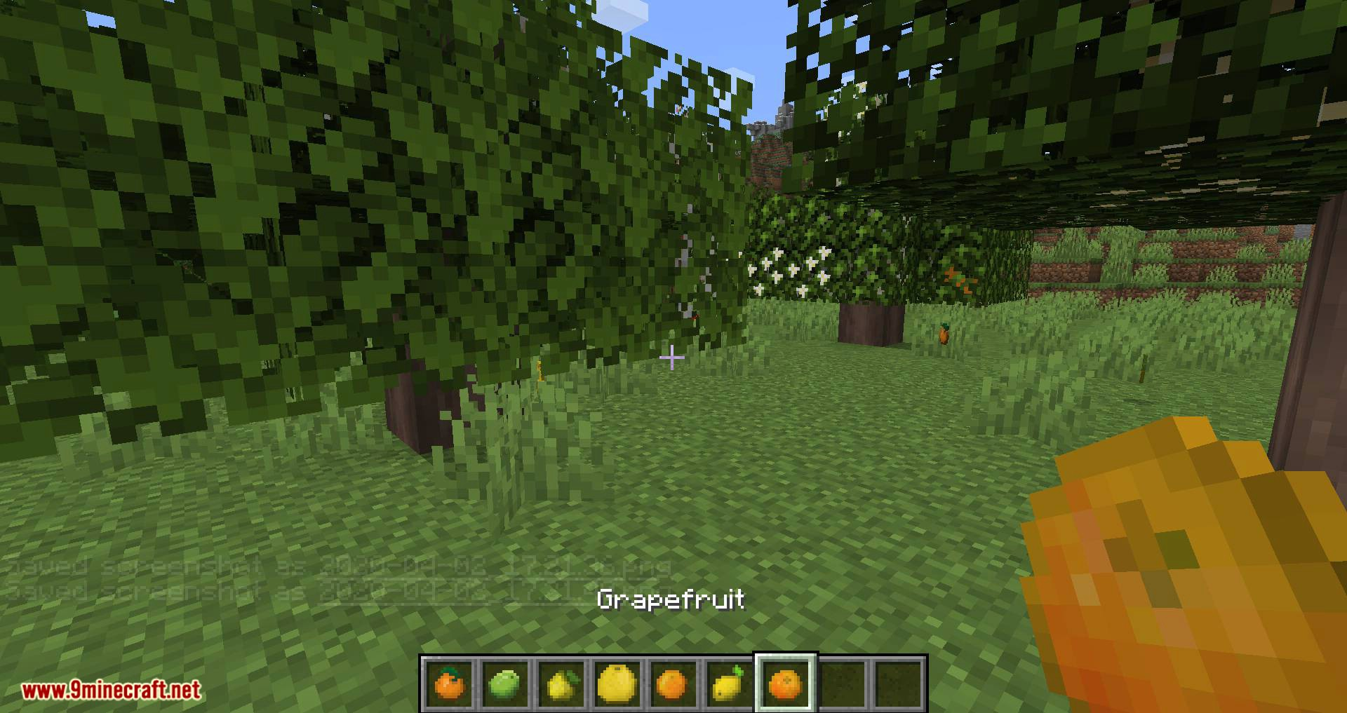 Fruit Trees mod for minecraft 12