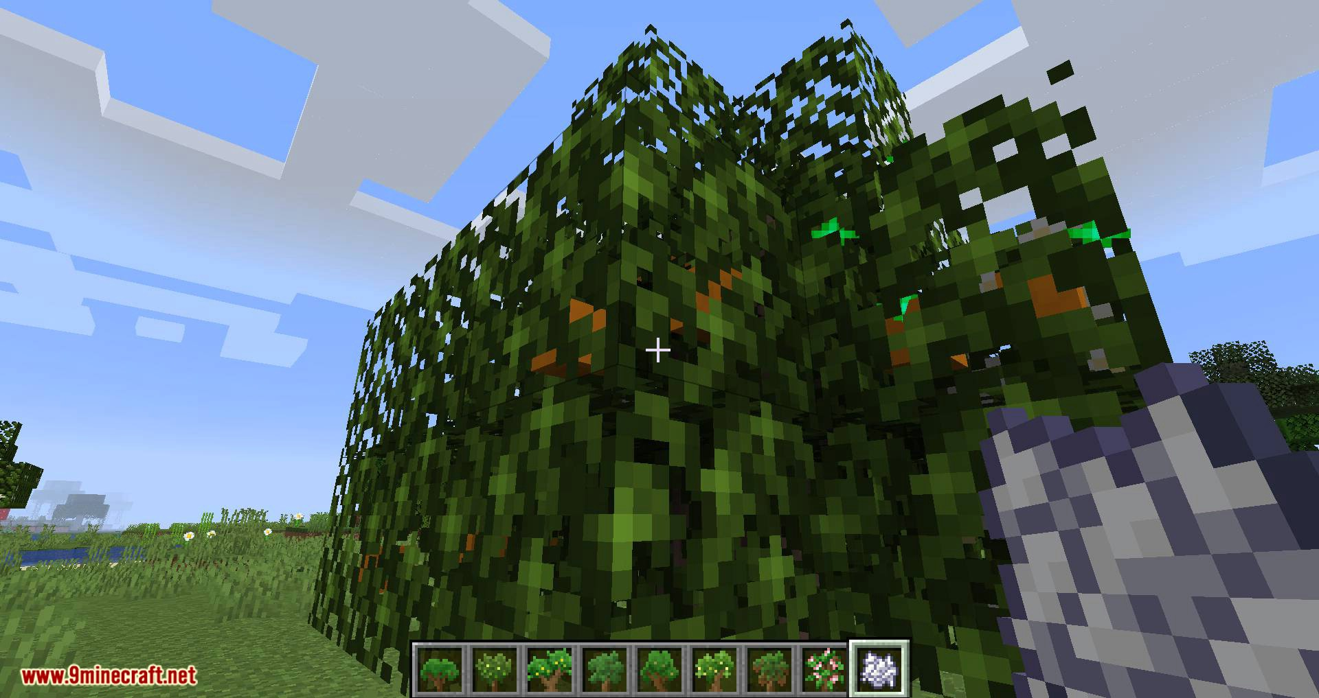 Fruit Trees mod for minecraft 03