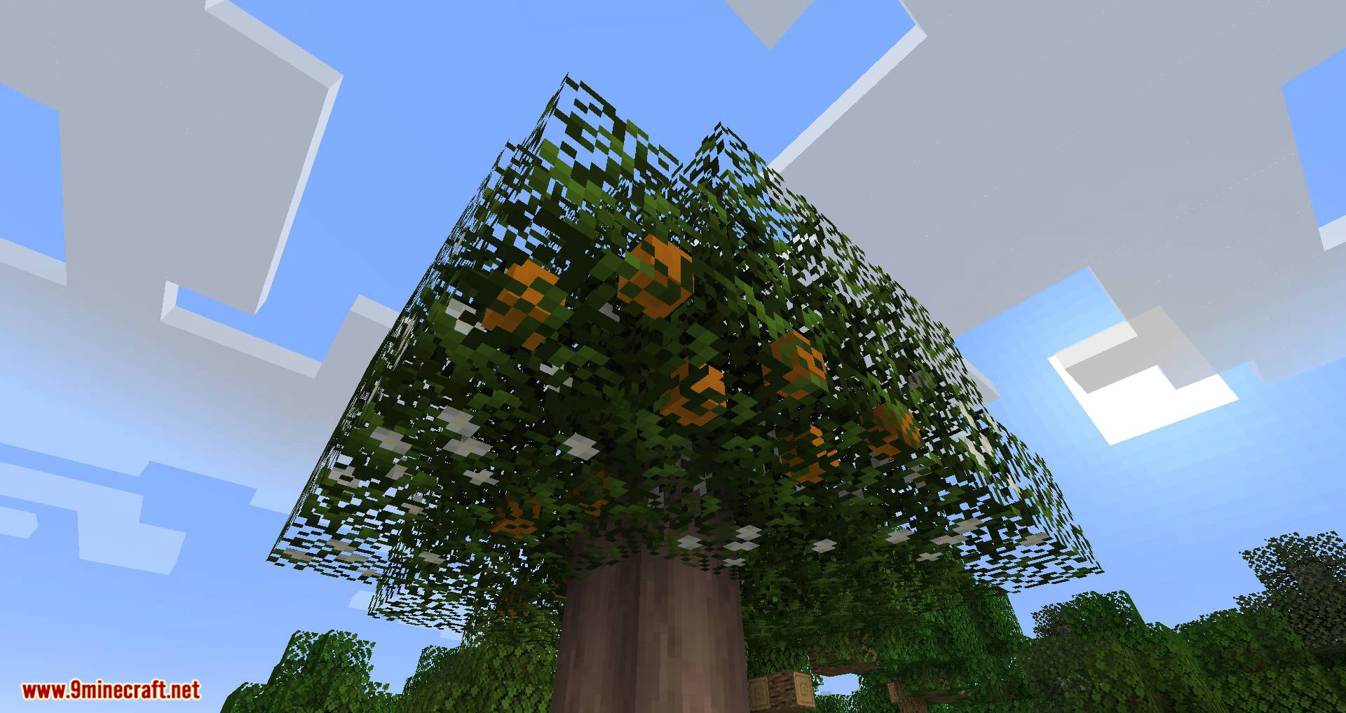 Fruit Trees mod for minecraft 06