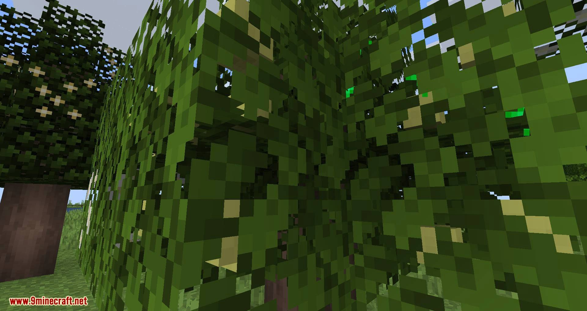 Fruit Trees mod for minecraft 07
