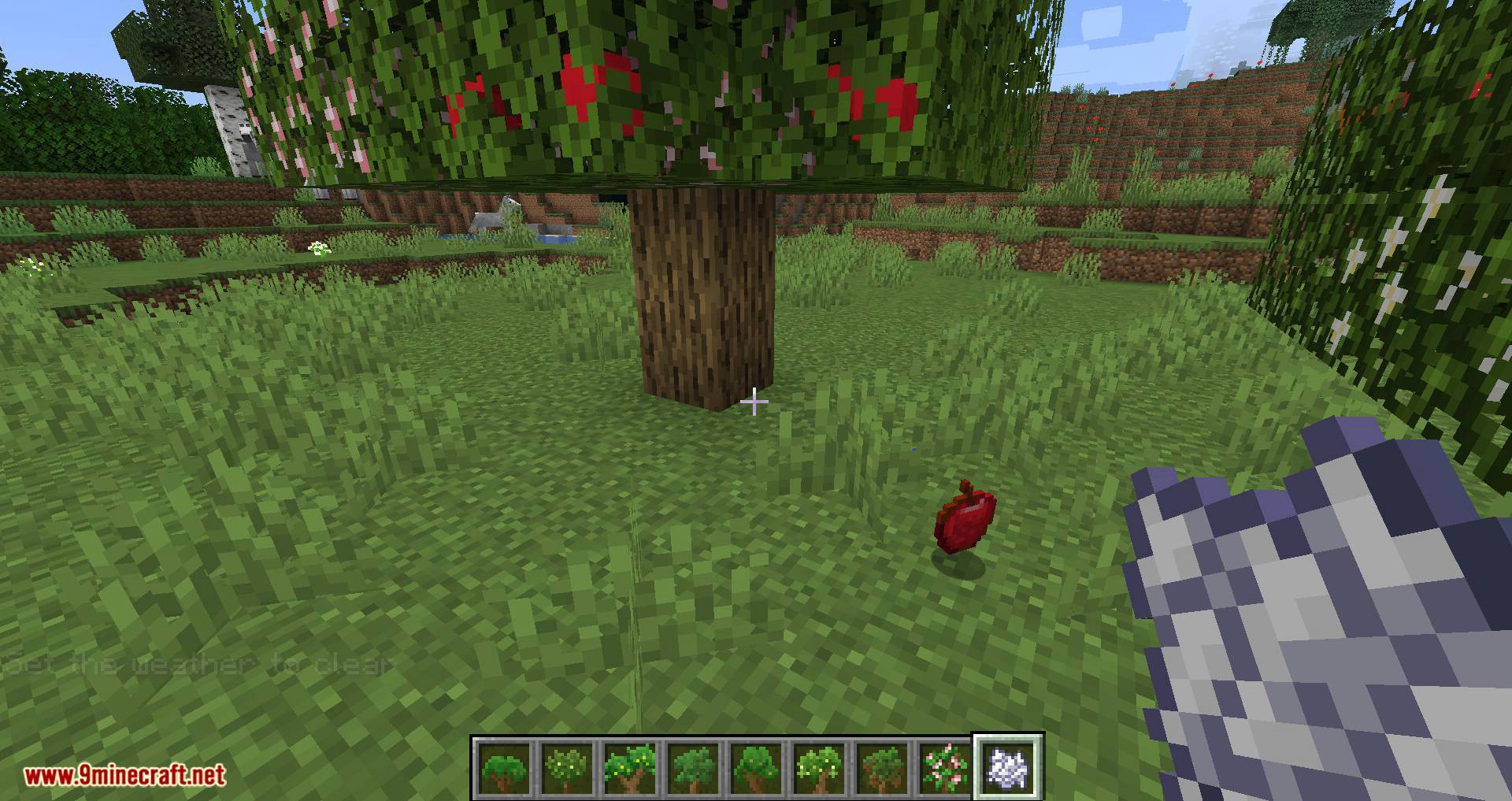 Fruit Trees mod for minecraft 09