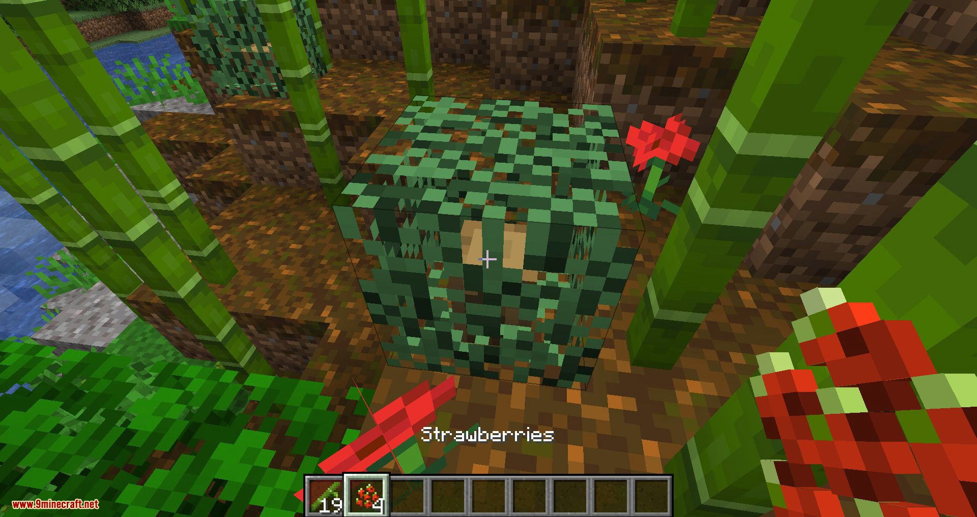Simple Farming mod for minecraft 02