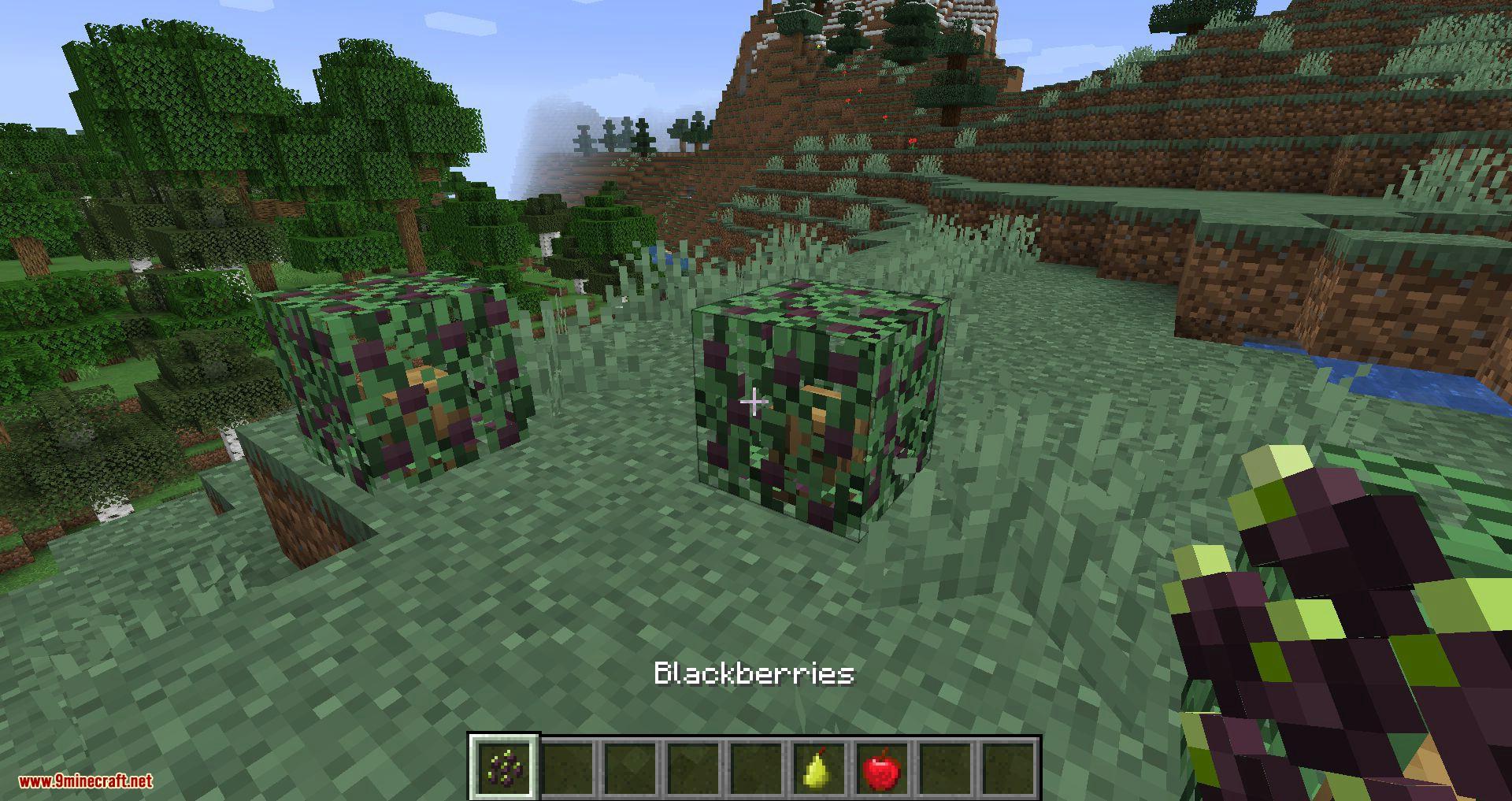 Simple Farming mod for minecraft 05