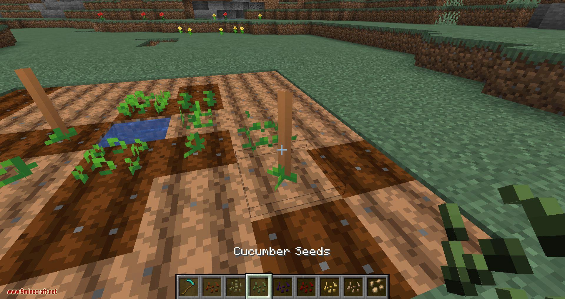 Simple Farming mod for minecraft 08