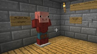 The best Minecraft Finding Maps - Button Hunt maps
