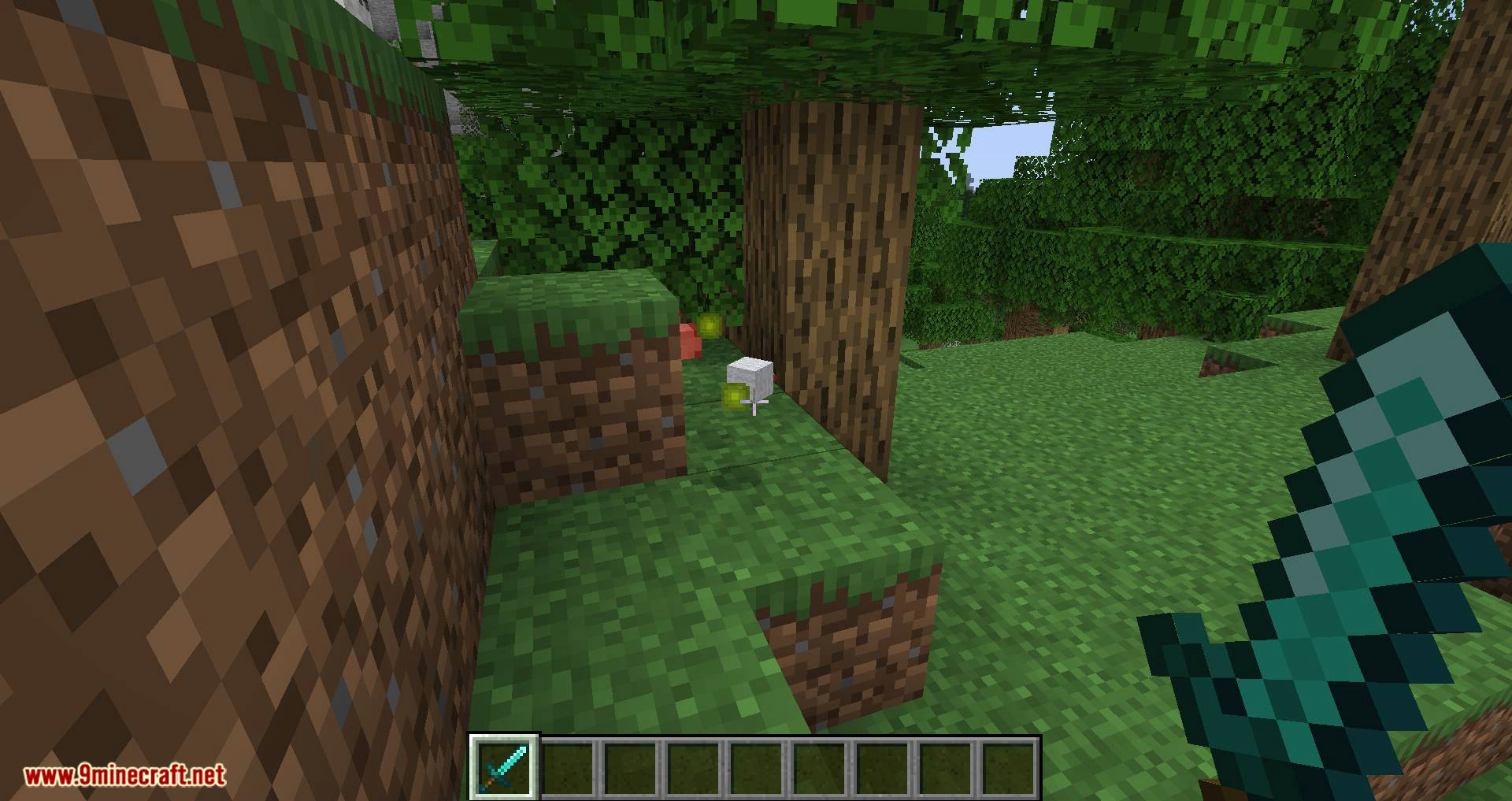 Better Dropped Items mod for minecraft 03