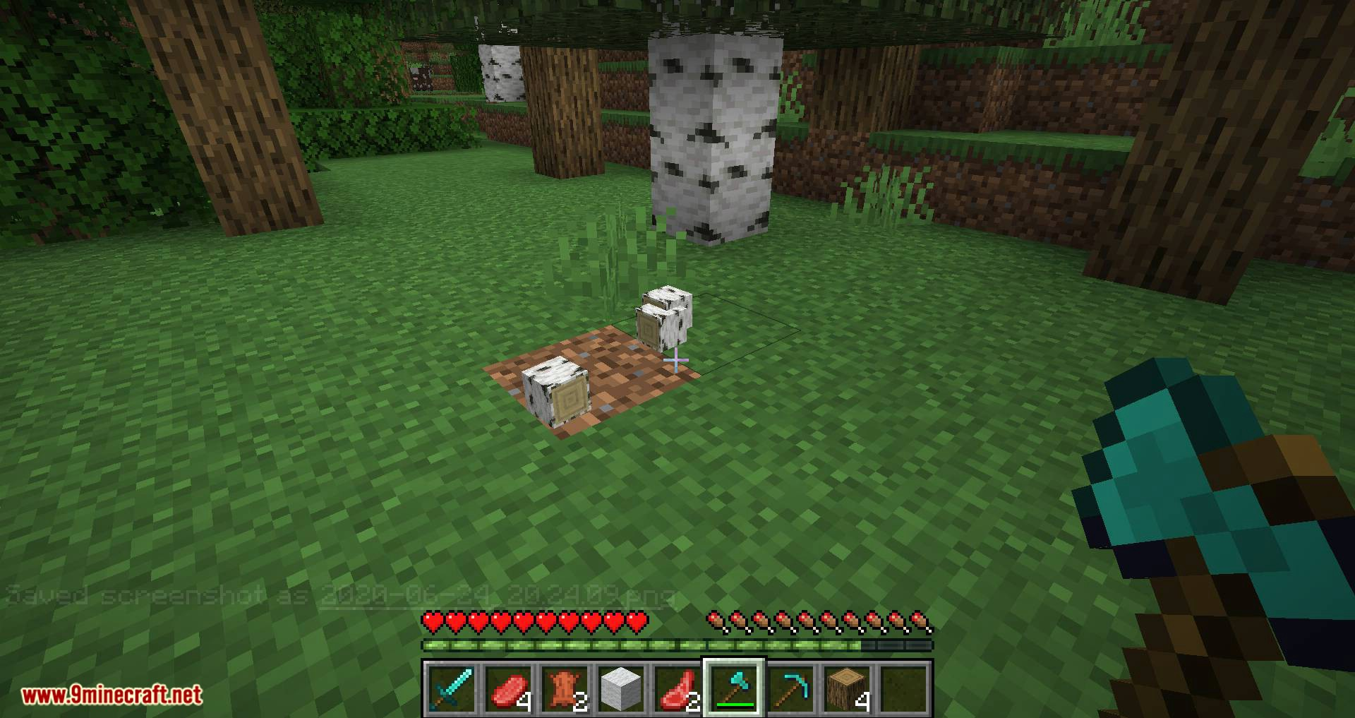 Better Dropped Items mod for minecraft 07